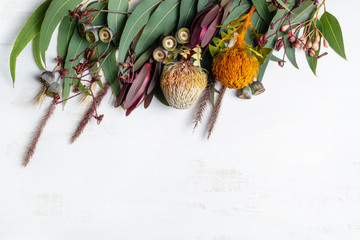 Beautiful flat lay floral arrangement of mostly Australian native flowers, including protea, banksia, kangaroo paw; eucalyptus leaves and gum nuts on a white background. Wall mural