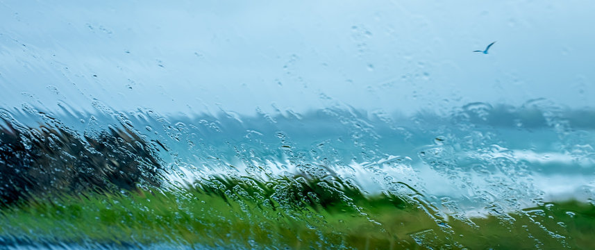 Veiw through car window screen distorted and blurred with falling rain drops out over grassy cliff edge to stormy sea and seagull.