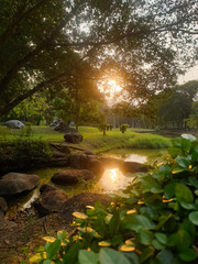 Sunset Or Sunrise In Garden with streams. Sunshine With Natural Sunlight And Sun Rays Through Woods...