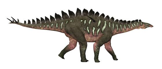 Dinosaurier Miragaia, Freisteller