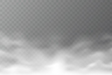 Poster de jardin Fumee Vector smoke cloud isolated on transparent background. Realistic dense fog. Abstract steam effect for your design. White haze. Vector illustration.