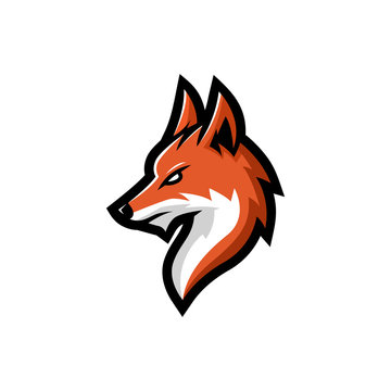 Fox head mascot logo vector illustration, with a wise eye look, suitable for the sports team mascot logo, e sport team etc.