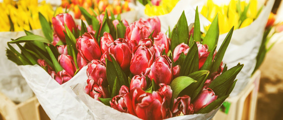 fresh tulips for sale at street flowers market
