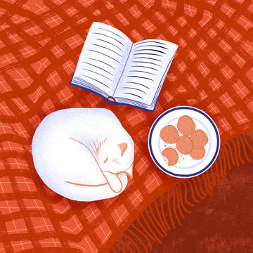 Sleeping cat, open book and cookies on plate