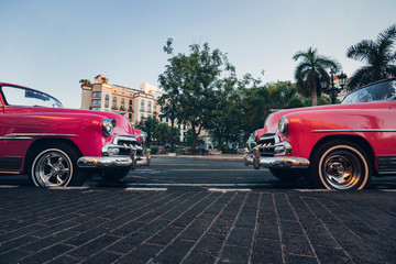 Aluminium Prints Havana Red retro cars are parked by the road. Paseo di Marti, Prado, Habana Vieja, Havana