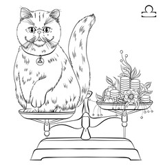 Zodiac. Vector illustration of the astrological sign of Libra as a Exotic shorthair cat with raised front paw. Line art template suitable for coloring book page. Print isolated on white background
