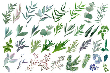 ПечатьHuge set of watercolor leaves and branches, hand drawn