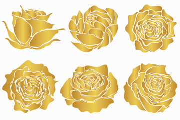 Set of golden roses isolated on white background. Vector silhouettes for floral design.
