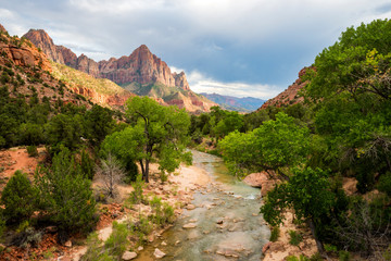Beautiful soft light illuminates a stunning view of the Virgin River and The Watchman in Zion National Park, Utah.