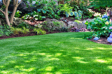 Photo sur Plexiglas Jardin This beautiful backyard woodland garden features a maintenance free lawn made of natural looking artificial grass, a huge landscaping trend for small spaces.