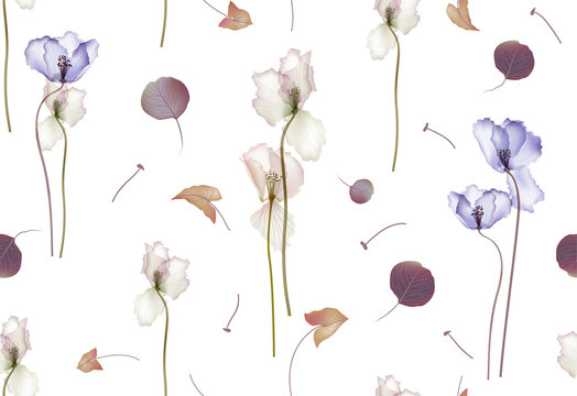 Floral seamless pattern. Spring flowers on a white background. Rustic style. Vector illustration