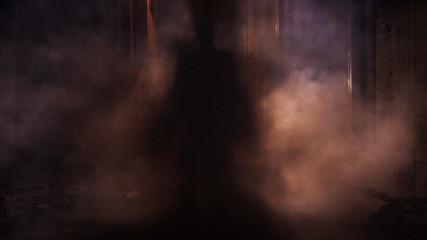 Fototapeta Silhouette Person Standing Amidst Smoke At Night obraz