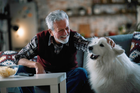 Old man with his best friend. senior man in living room with his dog.