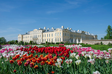 Foto auf Leinwand Tulpen Photo of Rundale palace and it's gardens, built in 18th Century with tulips. Baroque palace in Latvia