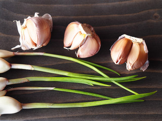 Garlic bulbs, stems with young greens garlic on a wooden background closeup, top view. Picture of a useful natural seasoning with vitamins for proper nutrition.