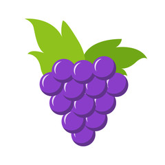 Fresh and juicy grape on white background. Vector illustration. EPS 10