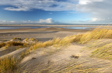 sunshine over sand dines and beach at north sea