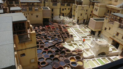 Leather dying in a traditional tannery in the city Fez Morocco