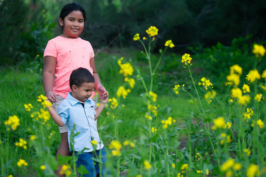 A big sister is helping her little brother walk through a nature trail full of yellow wild flowers.