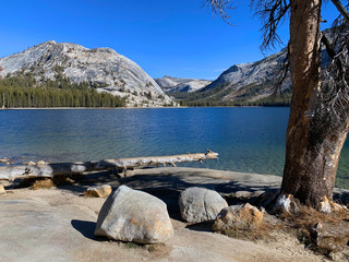 View of Tenaya Lake from the Tioga Pass, the road through Yosemite National Park to the Eastern Sierra Mountains