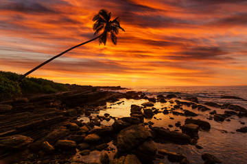 Romantic sunset on a tropical beach with palm trees.
