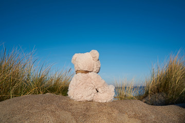 Sad teddy bear with wanderlust on the beach of the Baltic Sea near Warnemünde in Germany