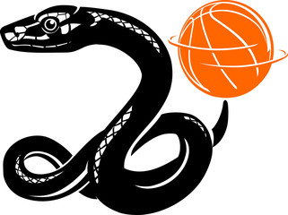 Black Mamba Snake with Spinning Basketball