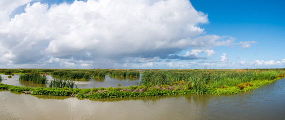 Panorama of marshland on manmade artificial island of Marker Wadden, Markermeer, Netherlands