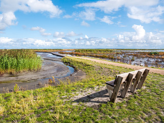 Bench overlooking marshes and footpath of nature trail on Marker Wadden in Markermeer, Netherlands
