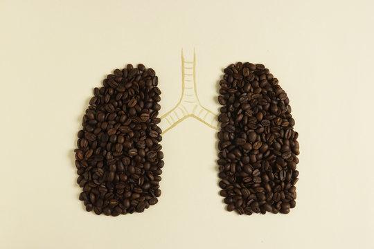 Conceptual human lungs