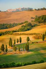 Wall Mural - Beautiful Tuscany landscape, Italy, Europe