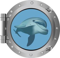 vista mare con primo piano un delfino dall'oblò