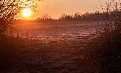 Garden Poster Brown Winter morning landscape