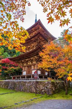 日本の秋 滋賀 湖東三山 西明寺㉗  Autumn in Japan, Shiga Prefecture, Koto-sanzan Saimyoji Temple #27