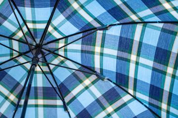 青い傘の写真