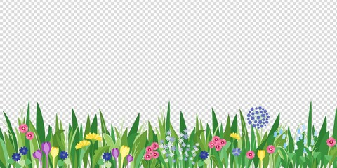 Spring garden grass and flowers border. Cartoon vector flower background. Green elements objects flora on transparent background Fototapete