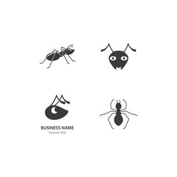 Ant Logo