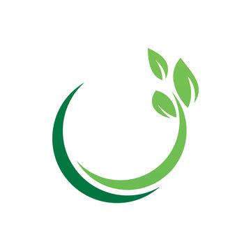 circle green nature leaf logo design