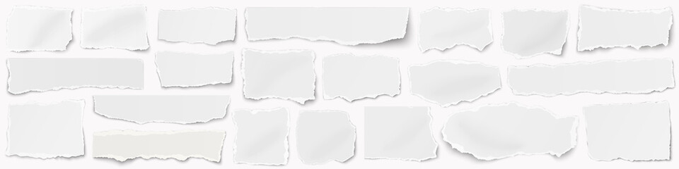 Fototapeta A long horizontal set of torn pieces of paper isolated on a white background. obraz