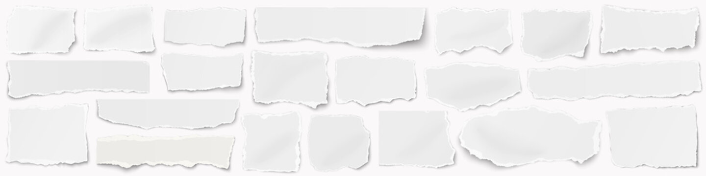 A long horizontal set of torn pieces of paper isolated on a white background.