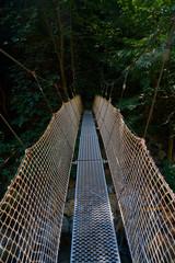 Puente colgante de hierro y cuerdas