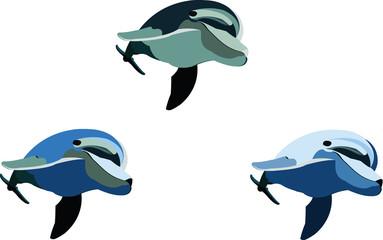 serie di delfini da disegnare e costruire