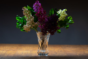 Poster Lilac Lilac on a dark background. Colorful lilac in a vase on the table. Lilac bouquet in a crystal vase. Branches with multicolored flowers on a gray background.