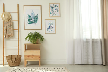 Beautiful paintings and plant at home. Idea for interior design