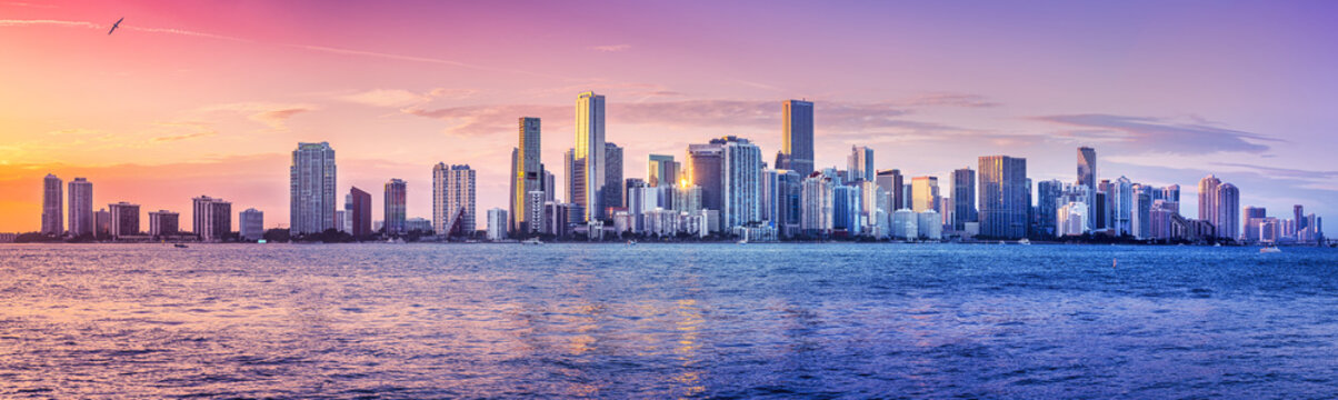 the skyline of miami while sunset
