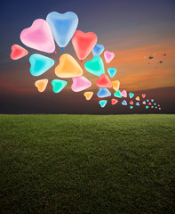 Colorful love heart balloon with green grass field over sunset sky with birds, Happy valentines day concept