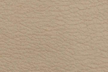 The texture of genuine leather. Light beige background, surface.