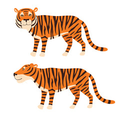 Tiger stand, vector illustration isolated on white background.