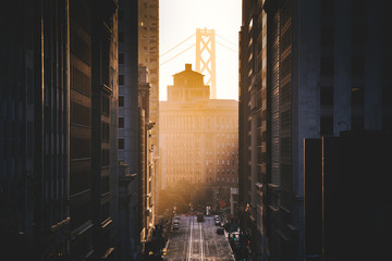 Foto op Canvas Ochtendgloren Downtown San Francisco with famous California Street illuminated in first golden morning light at sunrise in summer, San Francisco, California, USA