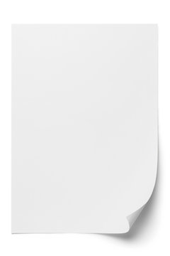 Blank paper sheet with a curved corner, isolated on white background